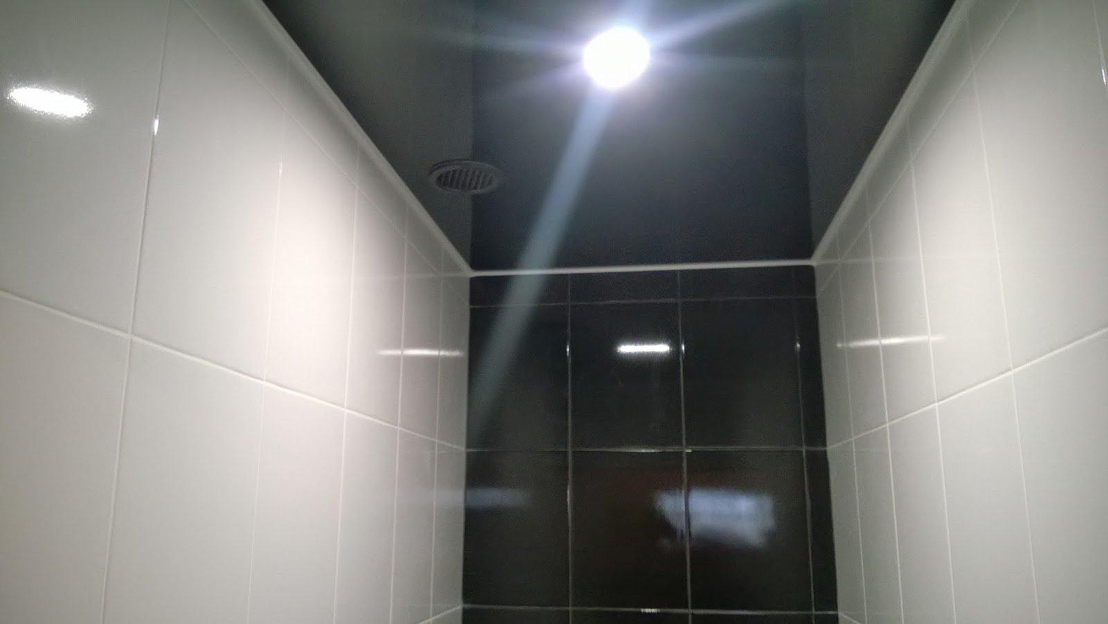 Mit eigenen Händen eine falsche Decke in der Toilette machen. \